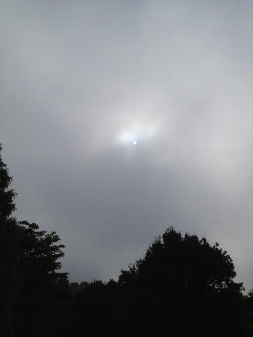 昼前まで霞んでましたが、霞が取れるとさっきまでの肌寒さはどこに行ったか。夏の暑さです!